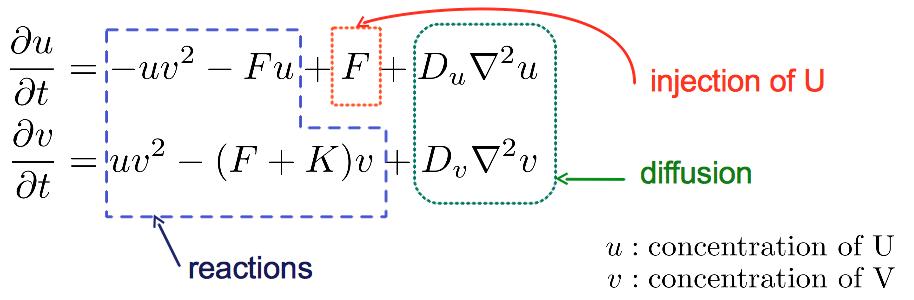 PyCellChemistry: The Gray-Scott Example